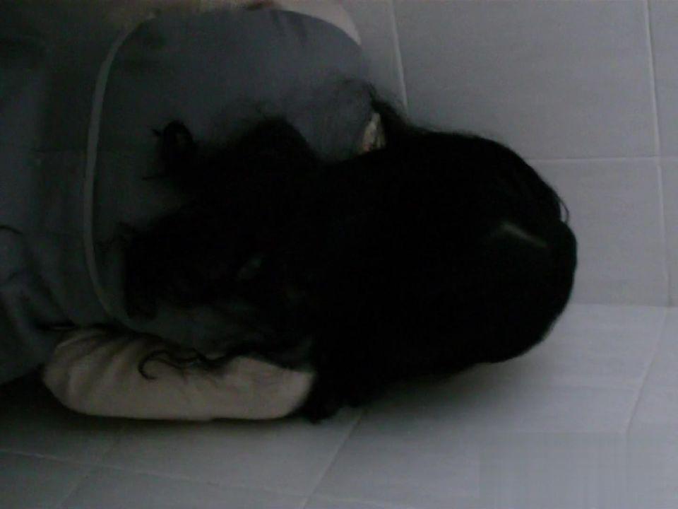 大胆坑神县城简陋旱厕偸拍多位姑娘少妇方便然后又跑到网吧厕所拍到一位妹子居然蹲在坑位上自摸